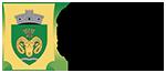 Primăria Bârsănești Logo